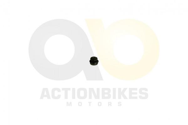 Actionbikes XYPower-XY500ATV-Wasserpumpendichtungsset 393933312D303632353030 01 WZ 1620x1080