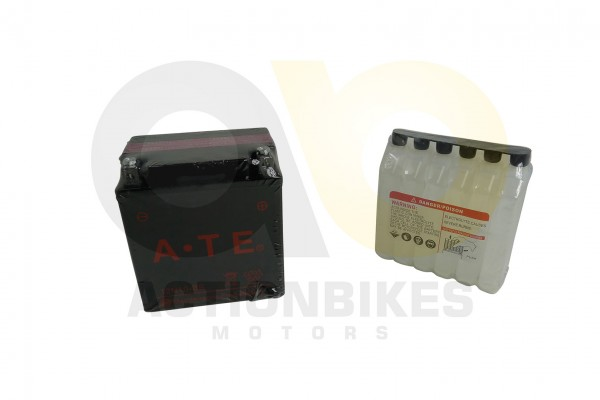 Actionbikes Batterie-12N9--BS-CN-Shineray-XY200ST-6AStartrike-300-JLA-925E 3331303730303630 01 WZ 16