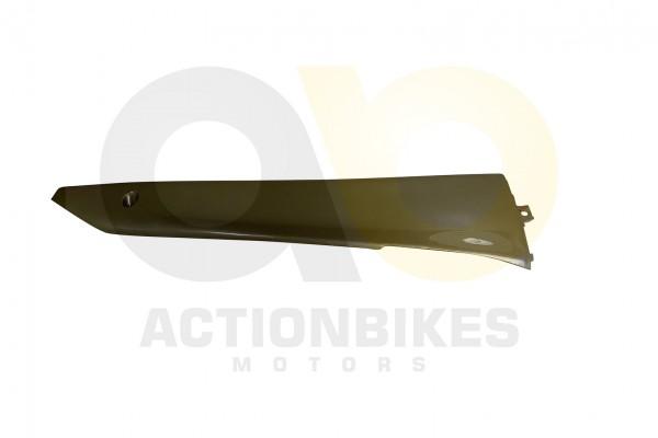 Actionbikes Znen-ZN50QT-HHS-Verkleidung-Seite-unten-rechts-champagne 36343330352D444757322D393030302