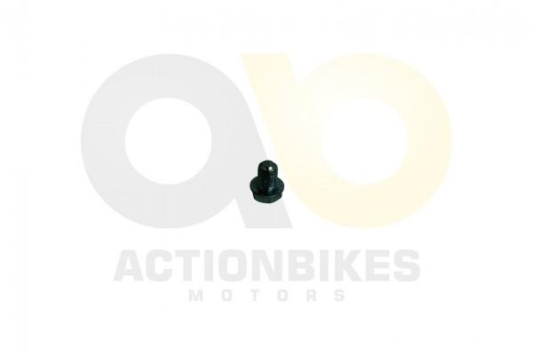 Actionbikes Shineray-XY150STE--XY200ST-9-lablassschraube 4759362D3132352D303031353230 01 WZ 1620x108