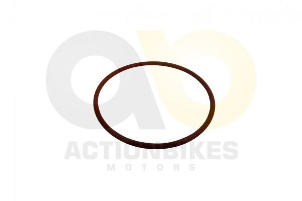 Actionbikes Bashan-300S-18-lfilterdeckel-Dichtring-535x23 3130353231312D303034 01 WZ 1620x1080