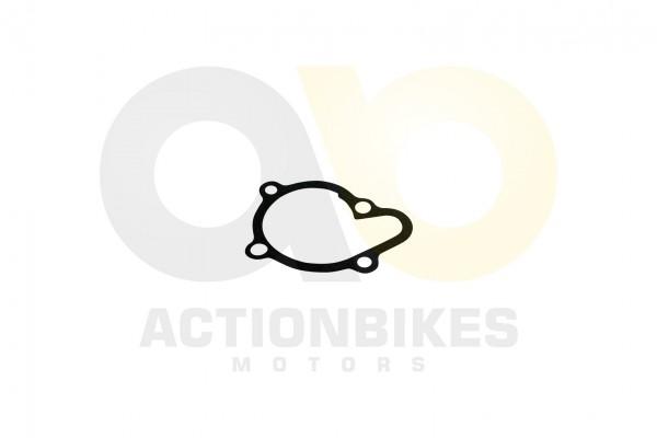 Actionbikes Shineray-XY250ST-9C-Dichtung-Wasserpumpe 4A4C3137322D303031393039 01 WZ 1620x1080