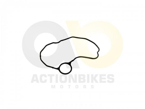 Actionbikes Shineray-XY250ST-9E--SRM--STIXE-Dichtung-Ventildeckel 31323331322D3131342D30303030 01 WZ