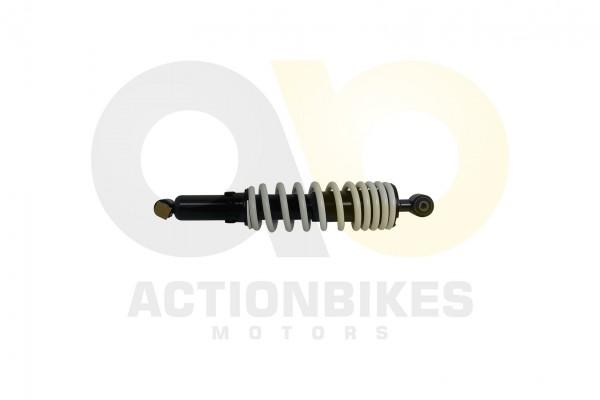 Actionbikes Jetpower-DL702-Stodmpfer-hinten 46323130313232413030 01 WZ 1620x1080