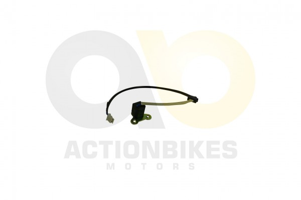 Actionbikes Motor-250cc-CF172MM-Lichtmaschine-Pulsgeber-Pick-up 33313133302D534343302D30303030 01 WZ