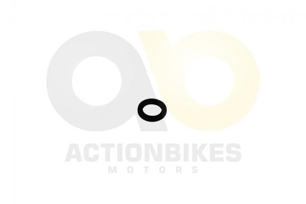Actionbikes Simmerring-142035-Motorgehuse-hinten-links-Motor-250cc-172MM 3137324D4D2D303131303038 01