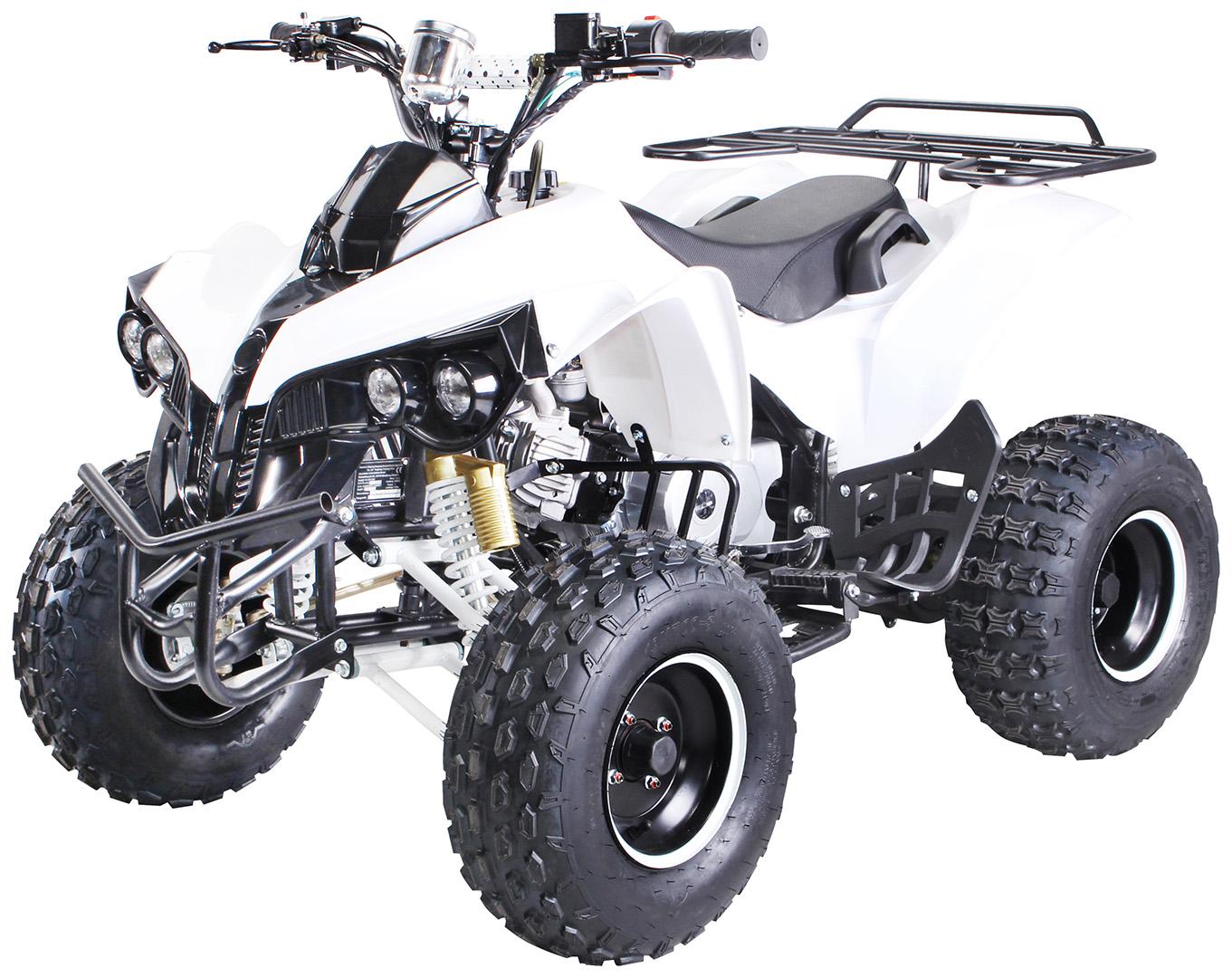 kinder quad atv s 10 125 cc benzin kinder quads fahrzeuge miweba gmbh. Black Bedroom Furniture Sets. Home Design Ideas
