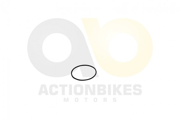 Actionbikes Lingying-250-203E-O-RING--65265-Wasserpumpe 39303130312D3330363330303030323635 01 WZ 162