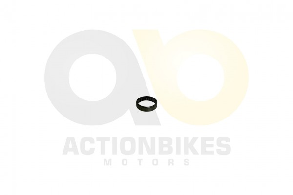 Actionbikes Feishen-Hunter-600cc-Nockenwellenadellager-vorderer-Zylinder 302E30352E3033383030 01 WZ