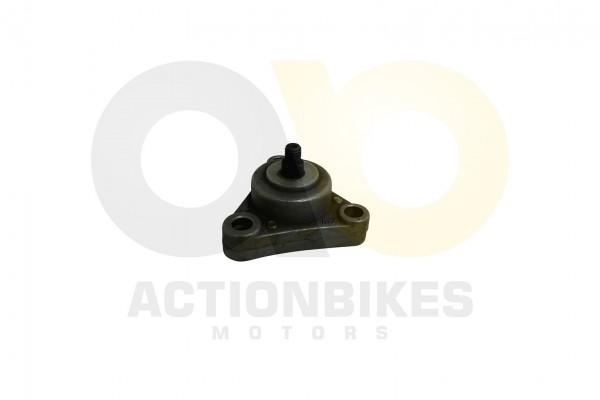 Actionbikes 139QMB-lpumpe- 313339514D422D313030313030 01 WZ 1620x1080
