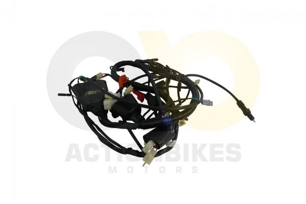 Actionbikes Kabelbaum-Shineray-XY250ST-5 3331303630393438 01 WZ 1620x1080