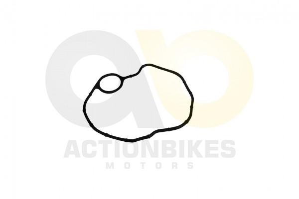 Actionbikes Shineray-XY200STII-Dichtung-Ventildeckel 31323331322D3037302D30303030 01 WZ 1620x1080