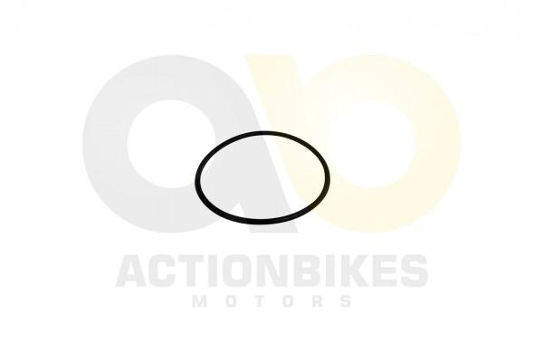 Actionbikes Shineray-XY125GY-6-Dichtring-Anlasserdeckel-63x265 3732313530303139 01 WZ 1620x1080